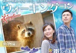 上野動物園ウォーキングコン!【20代限定】同世代の遠足気分で楽しく出会えるかも☆彡一人参加歓迎!